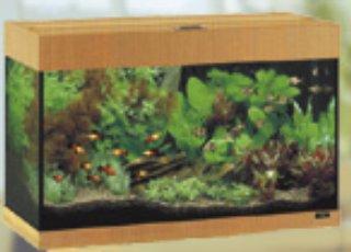 JUWEL akvaario
