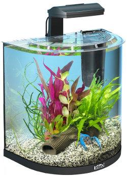 Akvaarion Veden Vaihto